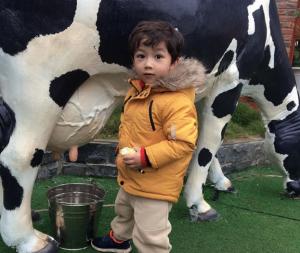co nen cho tre di du lich 03 300x253 - Cho trẻ nhỏ đi Mộc Châu du lịch và những điều nên biết | review Mộc Châu