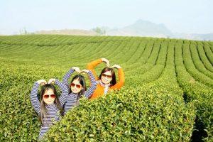 tre em du lich moc chau01 300x200 - Cho trẻ nhỏ đi Mộc Châu du lịch và những điều nên biết | review Mộc Châu
