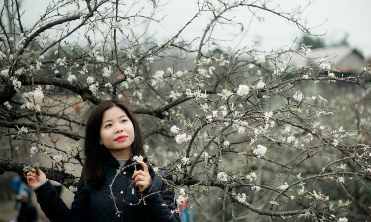 hoa man moc chau 01 750x450 - Lịch trình du lịch Mộc Châu 2 ngày 1 đêm | review mộc châu