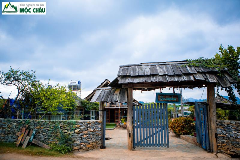 The Meadow Homestay 1 - Combo Homestay The Meadow Mộc Châu | 990k / người