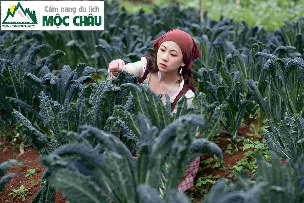 thoi trang vintage moc chau 1 120 - Tiệm cho thuê trang phục, phụ kiện boho, vintage đẹp Mộc Châu | Tiệm Nguyễn