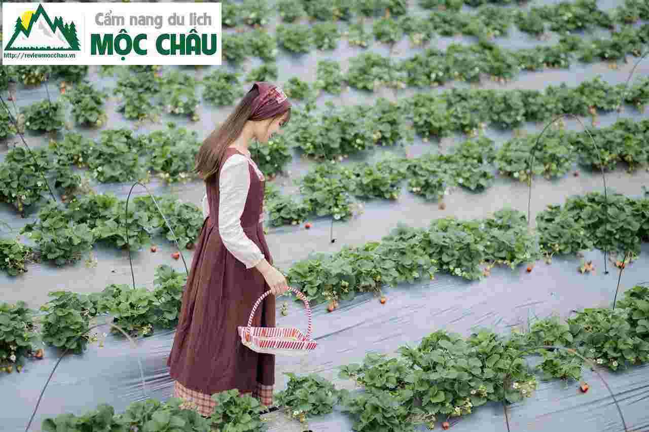 thoi trang vintage moc chau 1 99 - Tiệm cho thuê trang phục, phụ kiện boho, vintage đẹp Mộc Châu | Tiệm Nguyễn