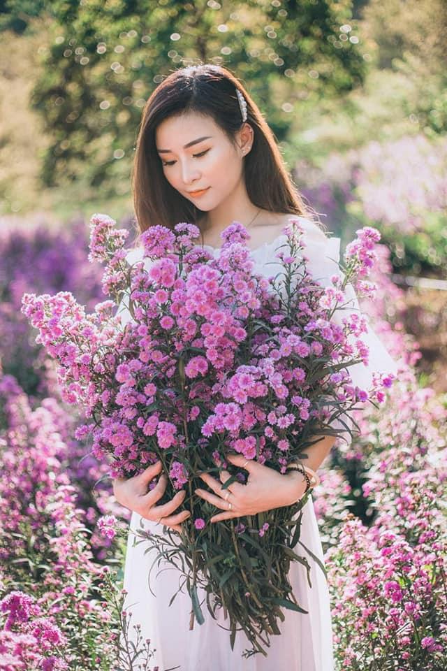 vuon hoa thach thao moc chau 1 - Đã mắt với vườn hoa thạch thảo Mộc Châu