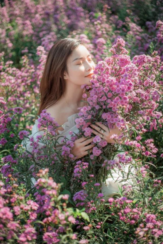 vuon hoa thach thao moc chau 9 - Đã mắt với vườn hoa thạch thảo Mộc Châu