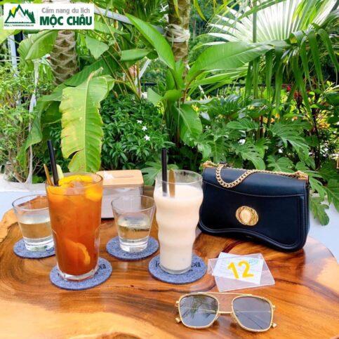 Tom's Garden Coffee more moc chau 29 483x483 - Tom's Garden Coffee & more Mộc Châu