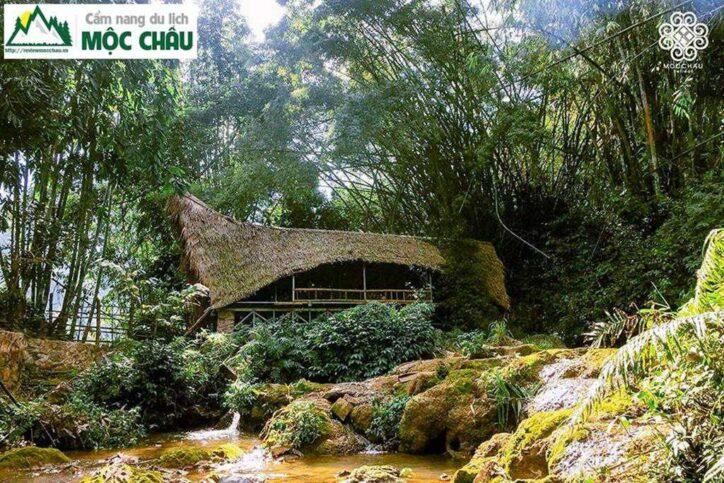 moc chau retreat 8 724x483 - Review Mộc Châu Retreat | Homestay yên bình giữa không gian xanh