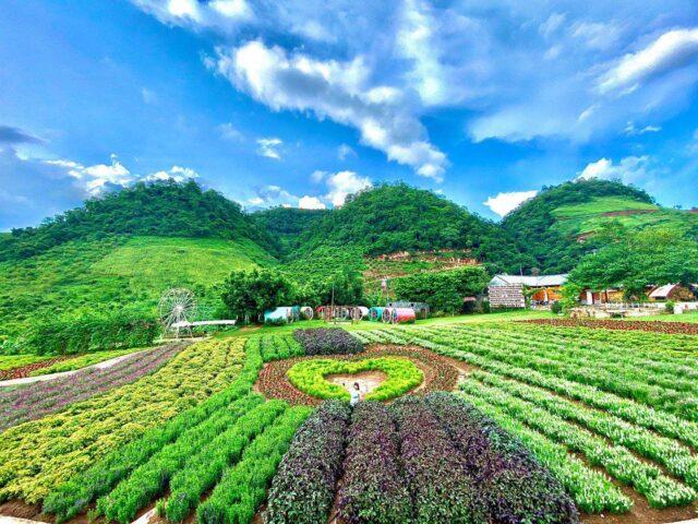 Happyland Mộc Châu