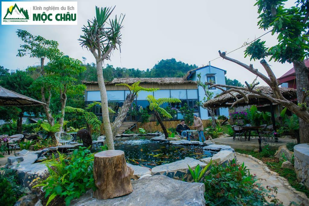 koi garden moc chau 30 - Koi Garden Mộc Châu quán caffee house cá koi đẹp nhất Mộc Châu
