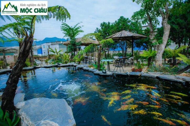 koi garden moc chau 32 724x483 - Koi Garden Mộc Châu quán caffee house cá koi đẹp nhất Mộc Châu