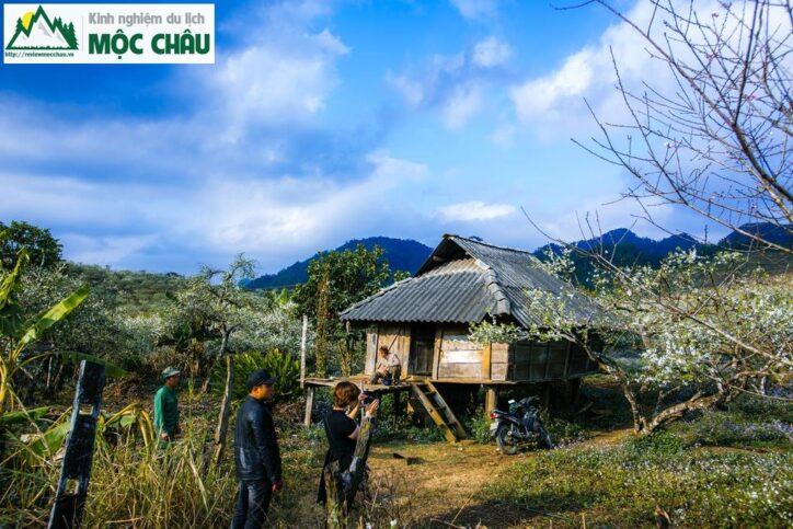 MCC 9968 Copy result 724x483 - Review Thung lũng Phiêng Khoang Mộc Châu chi tiết
