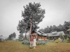 The Nordic Village Moc Chau 13 238x178 - Review Mộc Châu tất tần tật | Blog chia sẻ kinh nghiệm du lịch Mộc Châu