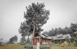 The Nordic Village Moc Chau 13 300x194 - Review Mộc Châu tất tần tật | Blog chia sẻ kinh nghiệm du lịch Mộc Châu