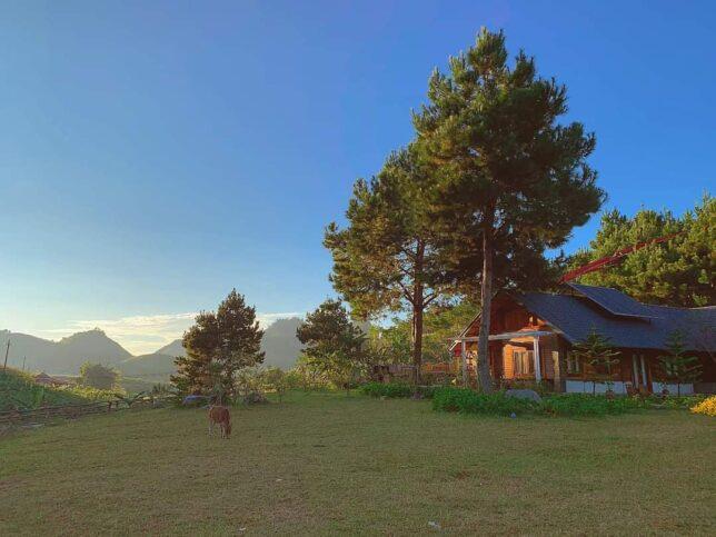 The Nordic Village Moc Chau 15 644x483 - The Nordic Village khu nghỉ dưỡng mang phong cách Châu Âu